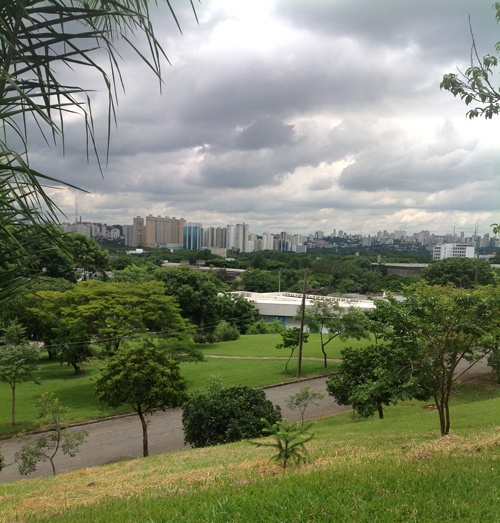 The city of Sao Paulo viewed from the University of Sao Paulo